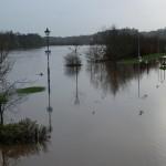 Flood-2